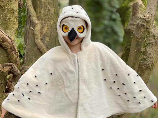 Waves and Wild Storybook Cape child owl costume