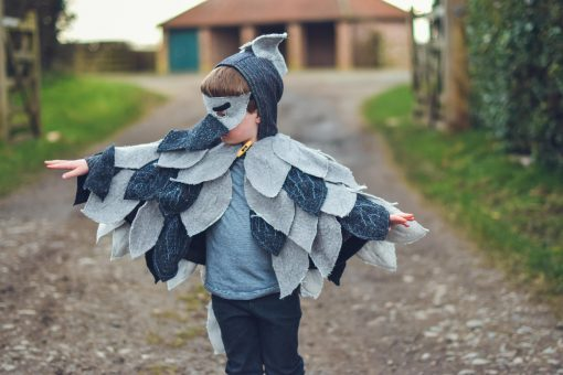 Waves and Wild Storybook Cape Go Away Bird