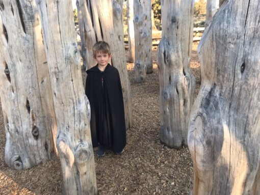 Waves and Wild Storybook Cape In the woods